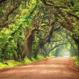 Dave Allen - Edisto Island South Carolina Dirt Road Landscape Charleston SC