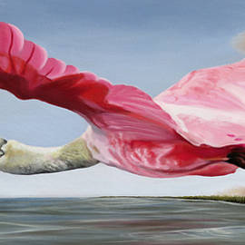 Edwin's Roseate Spoonbill by Phyllis Beiser