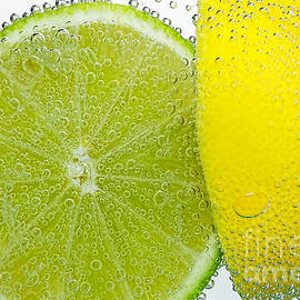 Kaye Menner - Effervescent Lime and Lemon by Kaye Menner
