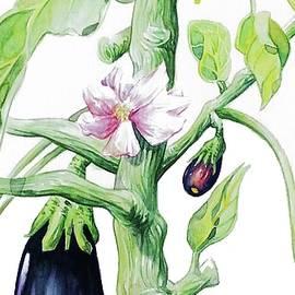 Robert Decurey - Eggplant 1