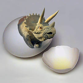 Eggstatic by Brian Wallace