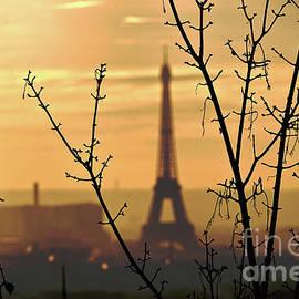 Eiffel Foggy Sunset by Edna W
