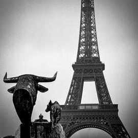 Eiffel Tower . by Cyril Jayant