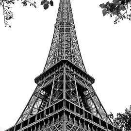 Nikolyn McDonald - Eiffel Tower in Black and White