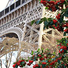Eiffel Tower In Winter by Katie Vigil