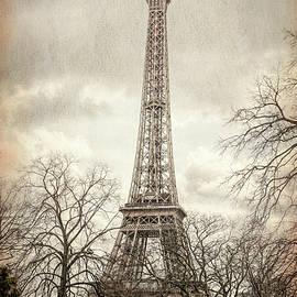 Eiffel Tower Through the Trees by Joan Carroll