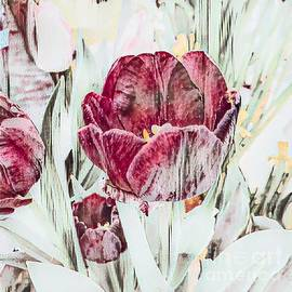 Elegant Muted Tulips by Luther Fine Art
