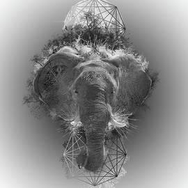 elephant - Bekim Art