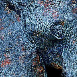 Elephant Blues by Chris Scroggins