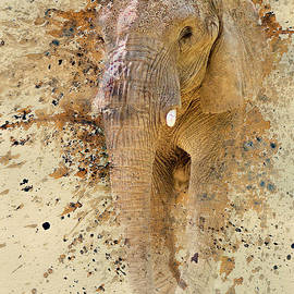 Elephant Color Splash by Pam  Holdsworth