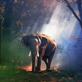 Georgiana Romanovna - Elephant In The Heat Of The Sun