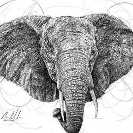 Michael Volpicelli - Elephant
