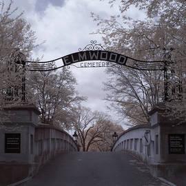 Elmwood Cemetery by Jim Cook