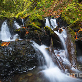 Emerald Falls Autumn by Mike Dawson