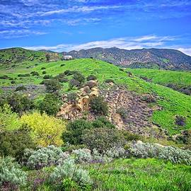 Lynn Bauer - Emerald Hills of Simi Valley