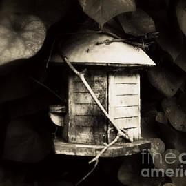 Rick Maxwell - Empty Nest
