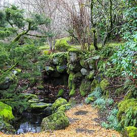 Enchanted Garden by Lorraine Baum