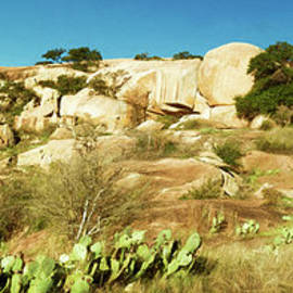 Enchanted Rock State Natural Area by Joan Carroll