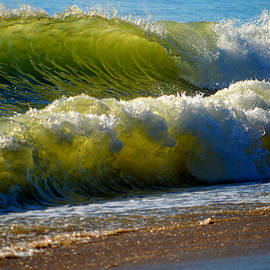 Energy of the Sea by Dianne Cowen