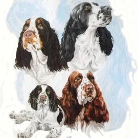 English Springer Spaniel Medley by Barbara Keith