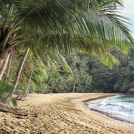 Englishmans Bay Tobago by Rachel Lee Young
