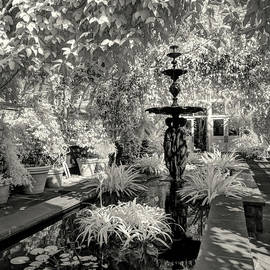 Enid A. Haupt Conservatory by Jeff Breiman