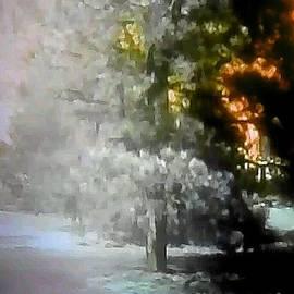 Lisa Simmons - Equinox