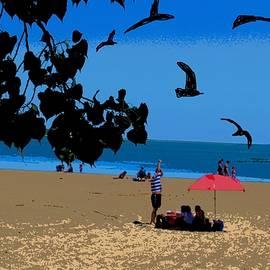 Anand Swaroop Manchiraju - Erie Beach Scene-2