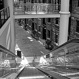 Kirsten Giving - Escalator Going Down in Sydney