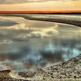 Estuary by Betsy Zimmerli