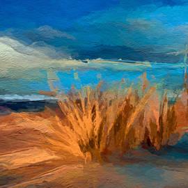 Anthony Fishburne - Evening beach dunes