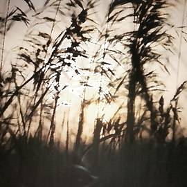 Jennifer Choate - Evening in the Country