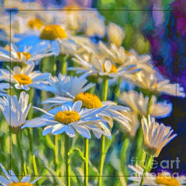 Evening Light by Jean OKeeffe Macro Abundance Art
