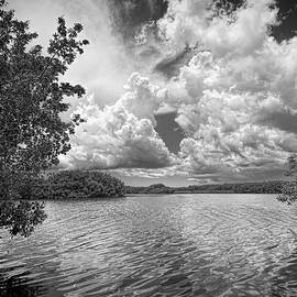 Everglades lake - 0278aBW by Rudy Umans