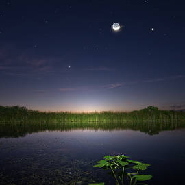 Mark Andrew Thomas - Everglades Moon and Stars