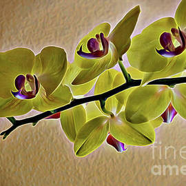 Diana Mary Sharpton - Exotic Orchid in Chartreuse
