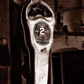 Lesa Fine - Expired Vintage Parking Meter Sepia