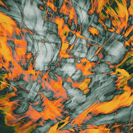 Bruce Pritchett - Exploded Fall Leaf Abstract