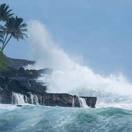 Frank Wilson - Exploding Sea Mist