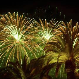 Bonnie Follett - Explosive in Green Fireworks