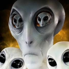 Barbara Chichester - Extraterrestrial Insight
