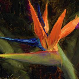 Karen Whitworth - Extravagance - Tropical Bird Of Paradise Flower