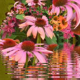 Nancy Pauling - Eyecatching Cone Flowers