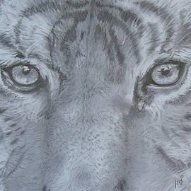 Eyes by Maria Woithofer