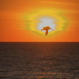 Roberta Byram - Fading Fast Sunset