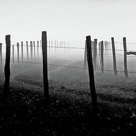 Fading Into The Fog II by Douglas Stucky