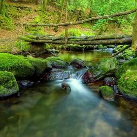 Joe Ormonde - Fairy Glen Bridge