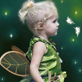 Brian Wallace - Fairy Princess
