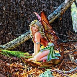 Fairy Shelter by Catherine Melvin