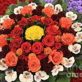 Fairy Tale Roses  by Dora Sofia Caputo